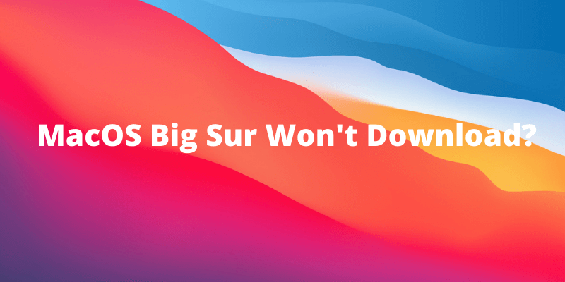 macos big sur wont download